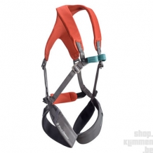 Momentum - Kid's Full Body Harness - Octane/Slate